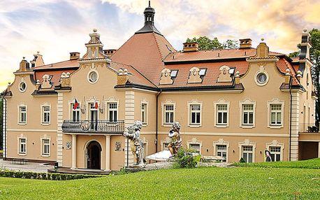 Rodinná vstupenka do Dětského ráje na zámku Berchtold