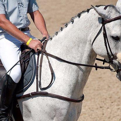 Hodina jízdy na koni pod dohledem instruktora