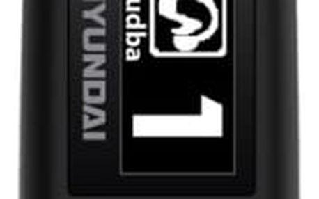 Hyundai MP 366 GB8 FM B