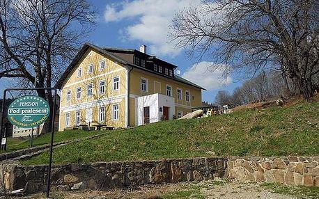 Ubytování s polopenzí v penzionu Pod pralesem na Šumavě, prostředí přátelské i pro rodiny s dětmi.