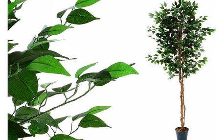 Umělá květina - fíkus - 190 cm