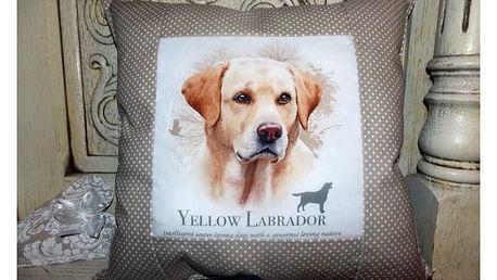 Dekorační polštářky Friendly Dogs - VÝPRODEJ!