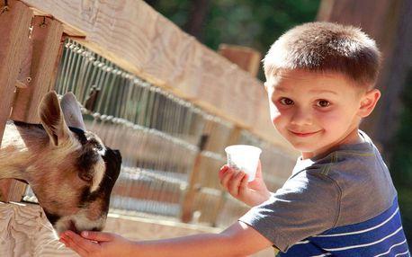 České Švýcarsko pro 2 a 2 děti na zvířecí EKO Farmě Camp Valdek