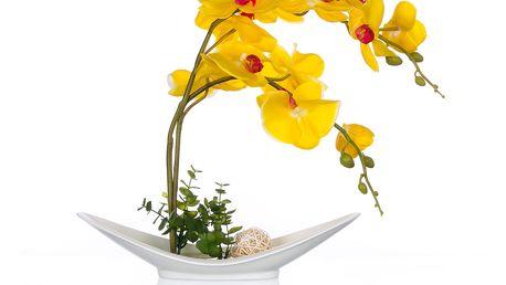Žlutá orchidej, umělá v misce