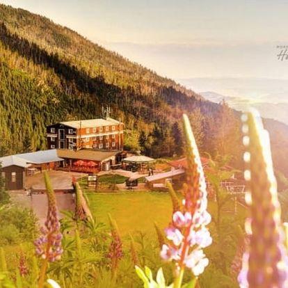 Nízké Tatry v horském hotelu s wellness