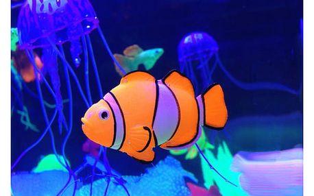 Robotická akvarijní rybka