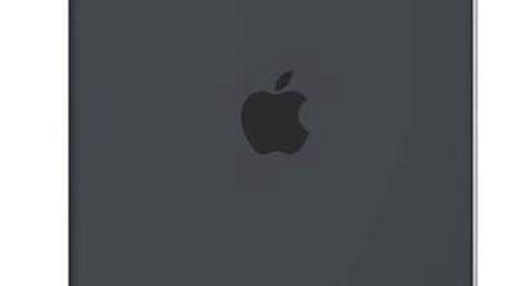 """Kryt Apple Silicone Case pro iPad Pro 9.7""""- uhlově šedé (mm1y2zm/a)"""
