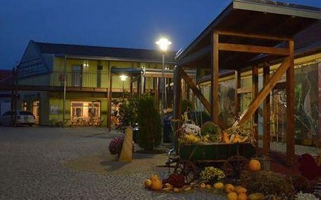 Letní pobyt v 3*penzionu Welya se vstupem na termální koupaliště Vadaš. Welcome drink, snídaně aj.