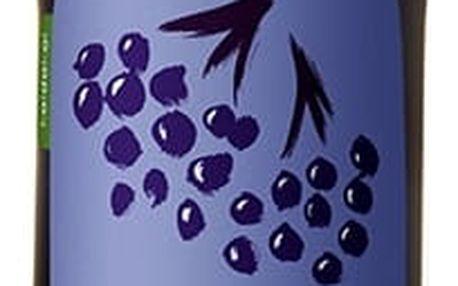 KOLDOKOL BIO Sirup ovocný - aronie 300 ml