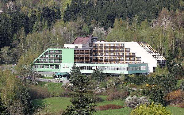Hotel Petr Bezruč
