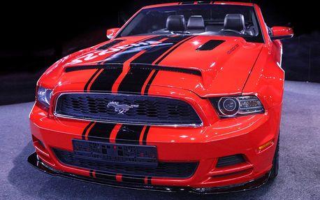 Kabriolet Mustang: zapůjčení na den nebo víkend