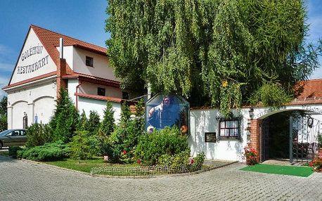 2–3denní pobyt pro 2 v hotelu Golden Golem*** v klidném prostředí kousek za Prahou