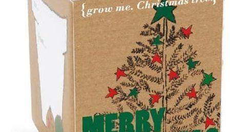 GROW ME Vánoční stromek
