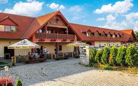3denní pobyt s polopenzí pro 2 v podhůří Jizerských hor v hotelu Farma Vysoká***