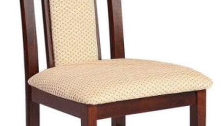 Jídelní židle STRAKOŠ P