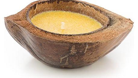 OH MY HOME Svíčka v kokosovém ořechu