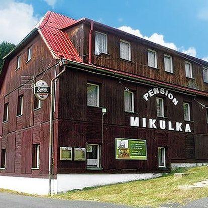 3–5denní pobyt s polopenzí v pensionu Mikulka pro 2 v Krušných horách