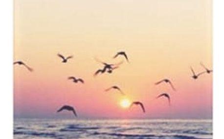 Kryt na iPhone - Krajinky