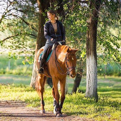 Pobyt na statku s polopenzí i jízdou na koni