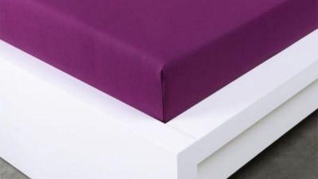 XPOSE ® Jersey prostěradlo Exclusive dvoulůžko - švestková 160x200 cm