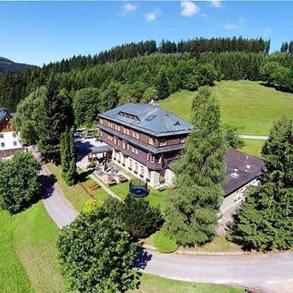 Relaxační wellness pobyt v Alpském hotelu s polopenzí, welcome drink, slevy na masáže a další.