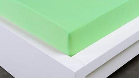XPOSE ® Jersey prostěradlo Exclusive dvoulůžko - světle zelená 180x200 cm
