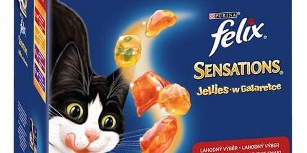 Kapsička Felix Sensations Jellies masový výběr 24 x 100 g