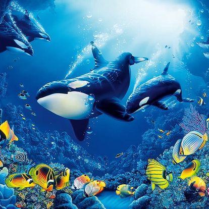 W+G fototapeta Mořský svět 366x254 cm