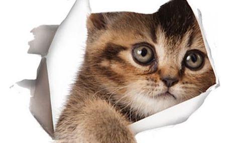 Malá 3D samolepka s pejskem či kočičkou - 5 variant