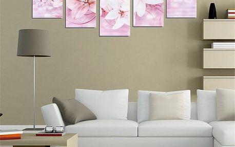 Sada obrazů - lilie - 5 ks - růžová