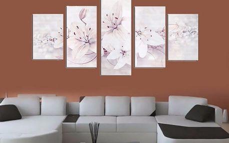 Sada obrazů - romantická květina - 5 ks - bílá