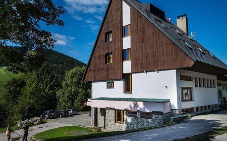 Parkhotel Harrachov *** s výhledem na Čertovu horu s polopenzí včetně all inclusive nápojů u večeře pro 2 a 2 děti do 13 let zdarma