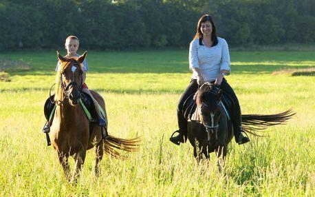 Hodinový zážitek: Projížďka na koni v přírodě