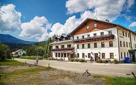 3–8denní pobyt pro 2 se saunou a polopenzí v hotelu Lesní dům v Bavorském lese