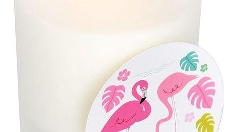 Svíčka s vůní papáji a kokosu Rex London Flamingo Bay