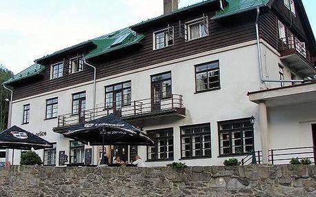 Relaxační letní pobyt v Hotelu Orlice pro dva s polopenzí, kulečník zdarma, bazén, horské tříkolky.