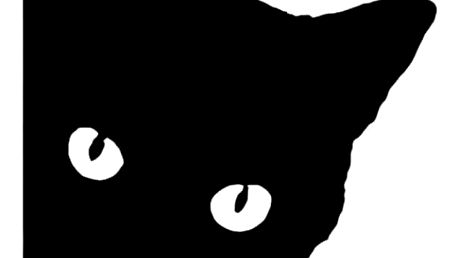 Samolepka na auto - kočka
