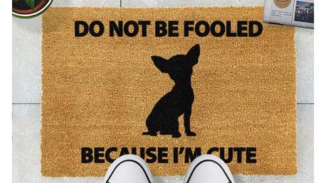 Rohožka Artsy Doormats Chihuahua,40x60cm - doprava zdarma!