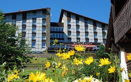 Wellness nebo aktiv pobyt pro dva v Hotelu Zadov, snídaně, večeře, zapůjčení kol, NW a koloběžek.