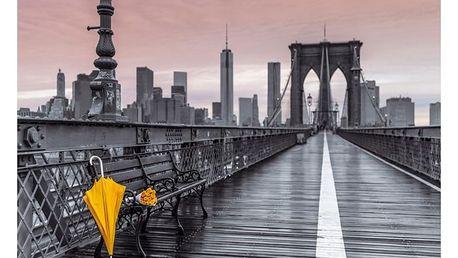Autronic Obraz na plátně Bridge