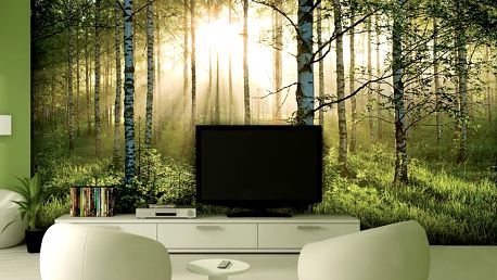 1Wall Vliesová fototapeta Prosvětlený les 366x253 cm