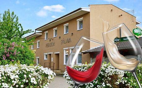 2–5denní pobyt pro 2 s neomezenou konzumací vína v penzionu Pálava na jihu Moravy