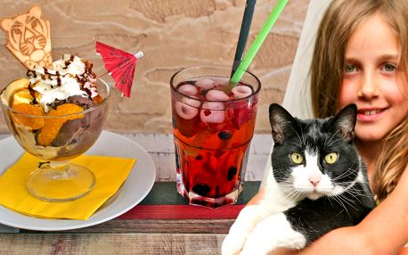 Zmrzlinové poháry a limonády v kočičí kavárně
