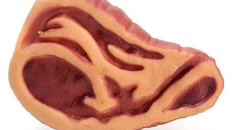 Gumová hračka pro psy - Steak