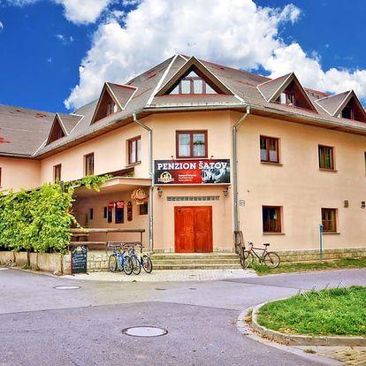 Pobyt v centru vinařské obce nedaleko Znojma s neomezenou konzumací vína + polopenze