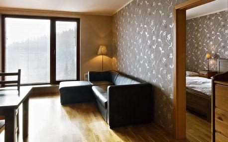 Týden v Krkonoších: Luxusní apartmán pro 4-8 os.