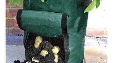 Pytel na pěstování brambor v bytě