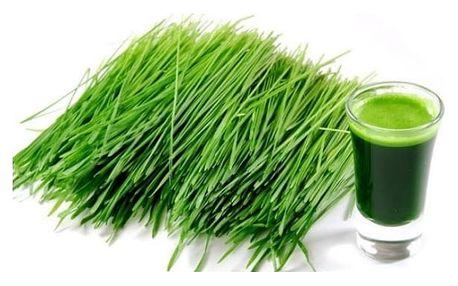 Hit jménem zelený ječmen 1000g - zelený zdroj zdraví v jedné sklenici.