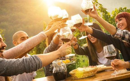 All inclusive vstup na Kunětické vinobraní