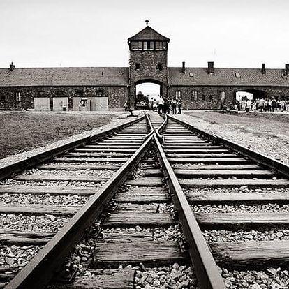 Celodenní zájezd pro 1 osobu do koncentračního tábora Osvětim a Březinka s prohlídkou
